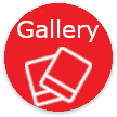 Automatic Gate Gallery